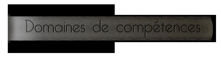 competences2